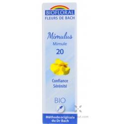 Mimulus jaune (Mimulus)