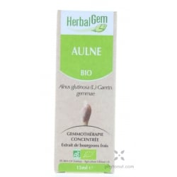 Aulne bourgeon - 15 ml