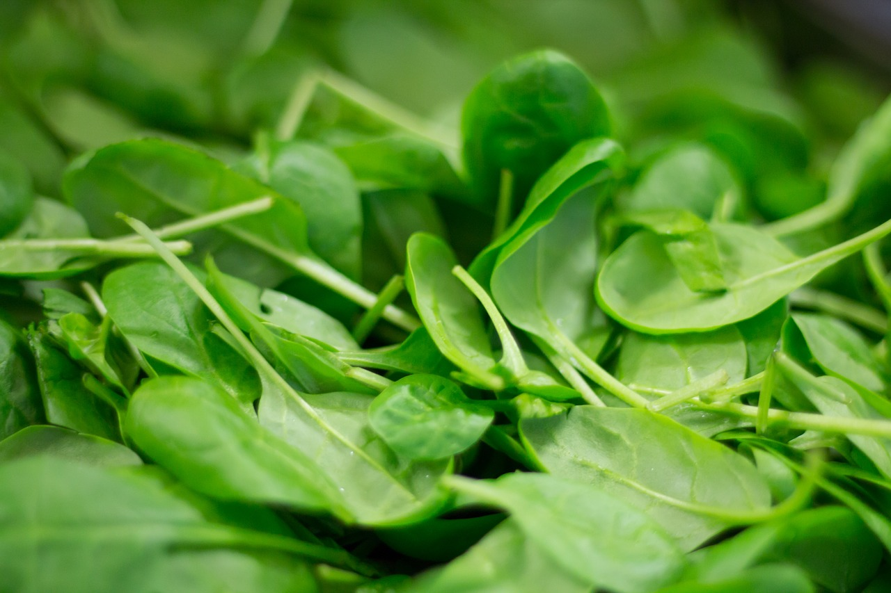 Épinard : un des aliments riches en caroténoïdes.